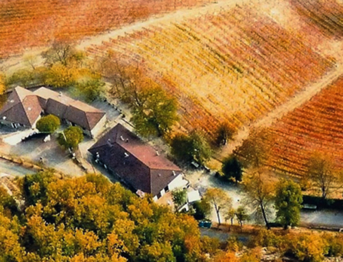A multifaceted farm in the area of the Alto Monferrato