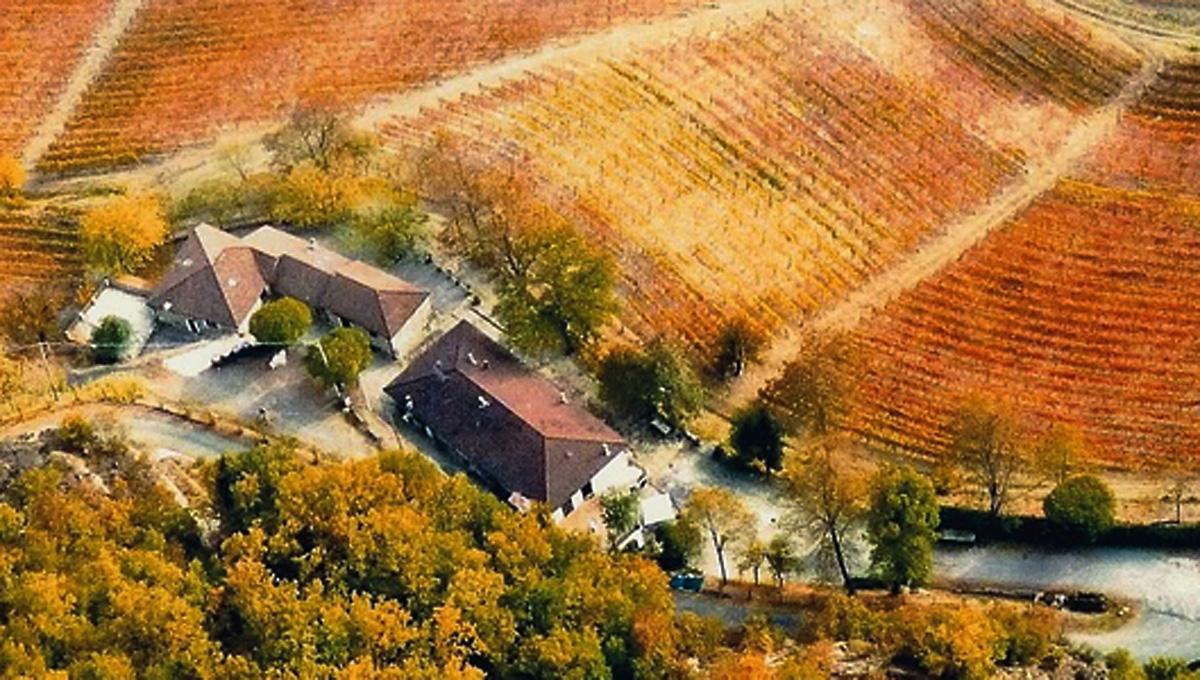 A multifaceted farm in the area of the Alto Monferrato